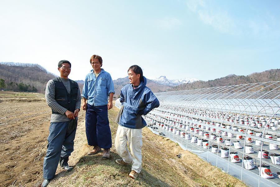 北海道の農業法人で働く。