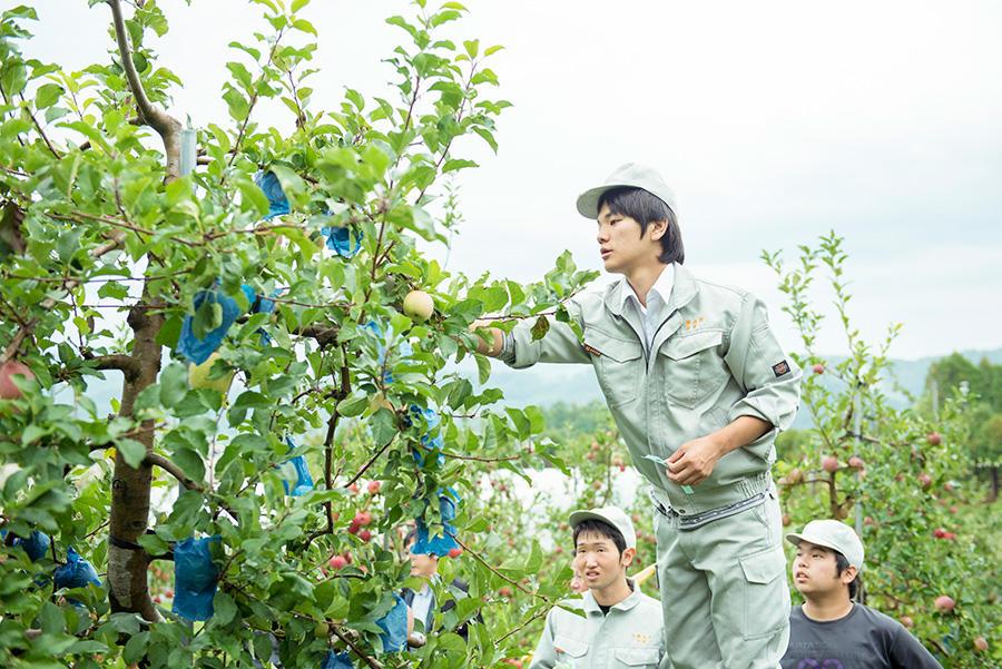 http://kurashigoto.hokkaido.jp/image/soubetsu_hs_seito_15.jpg