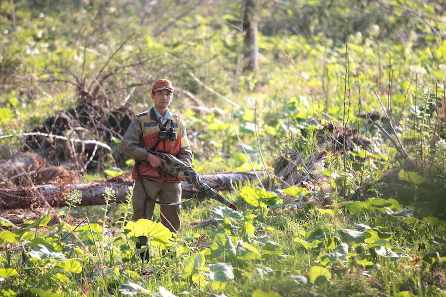 占冠の森を獣害から守るための試み。