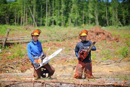 森を育て、人を育てる。有限会社スリ―スターズ興業