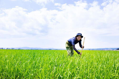 公務員として農家にガッチリ寄り添う働き方。