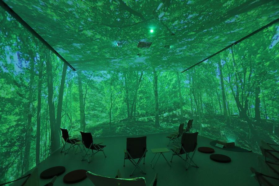 デジタル森林浴を体験してみませんか?
