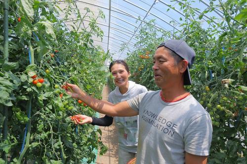 トマトはかすがい。移住した夫婦が、新規就農で見つけたスタイル