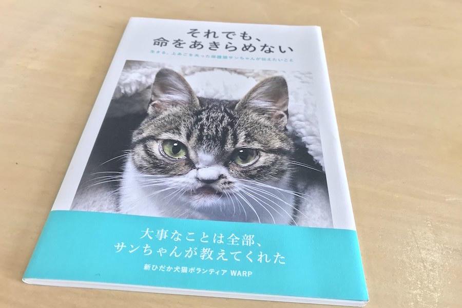 https://kurashigoto.hokkaido.jp/image/0ce74aabb1ca69504bf7846ea6897a1998693f7d.jpeg
