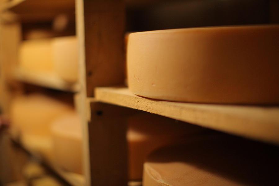 https://kurashigoto.hokkaido.jp/image/asr_shiawase-cheese_17.jpg
