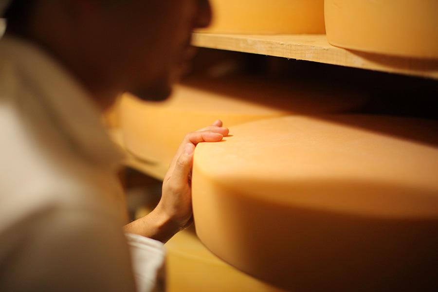 asr_shiawase-cheese_4.jpg