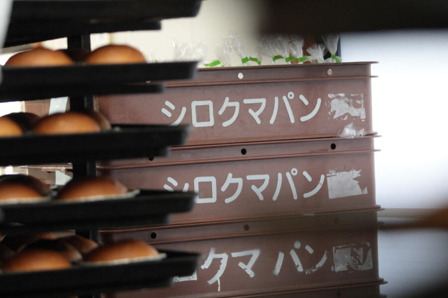 bear_shirokuma-hokkai_04.jpg