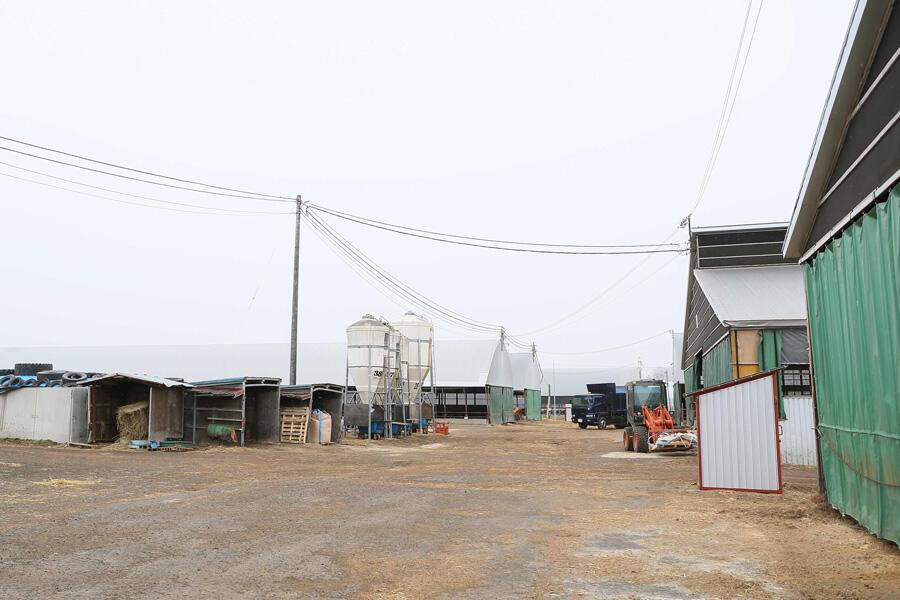 株式会社美幌牛肥育センター