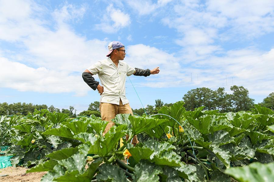 iskr_harukichi-farm_11.jpg