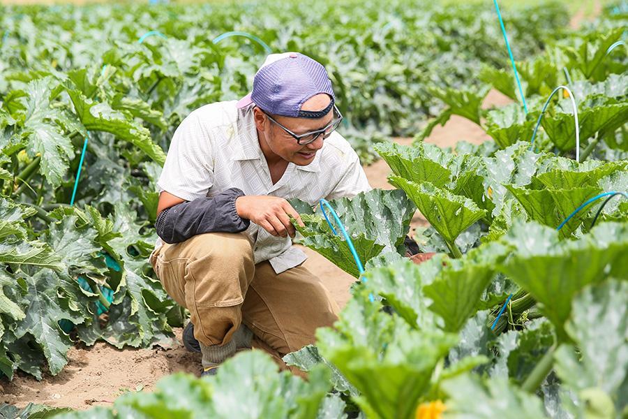 iskr_harukichi-farm_7.jpg