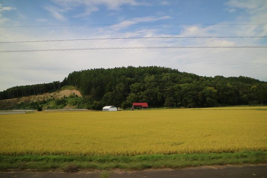 kamikawawakamonokaigi16.jpg