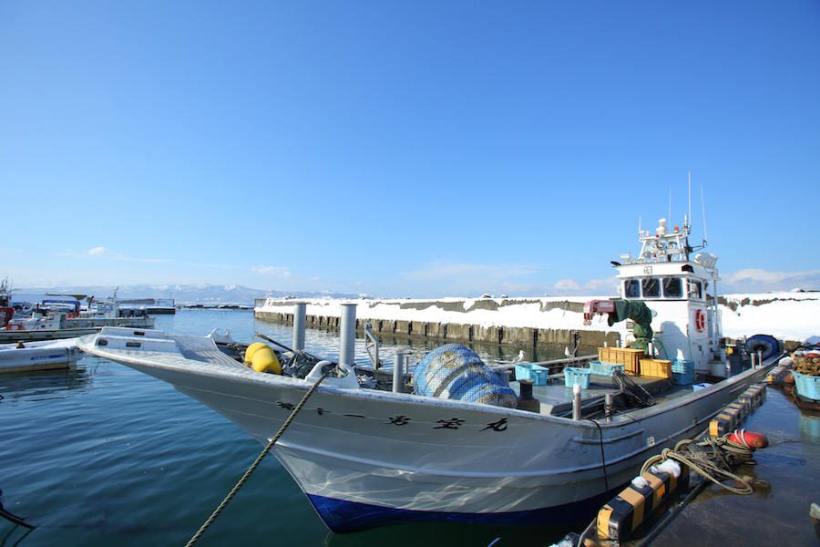 (有)カネサ漁業