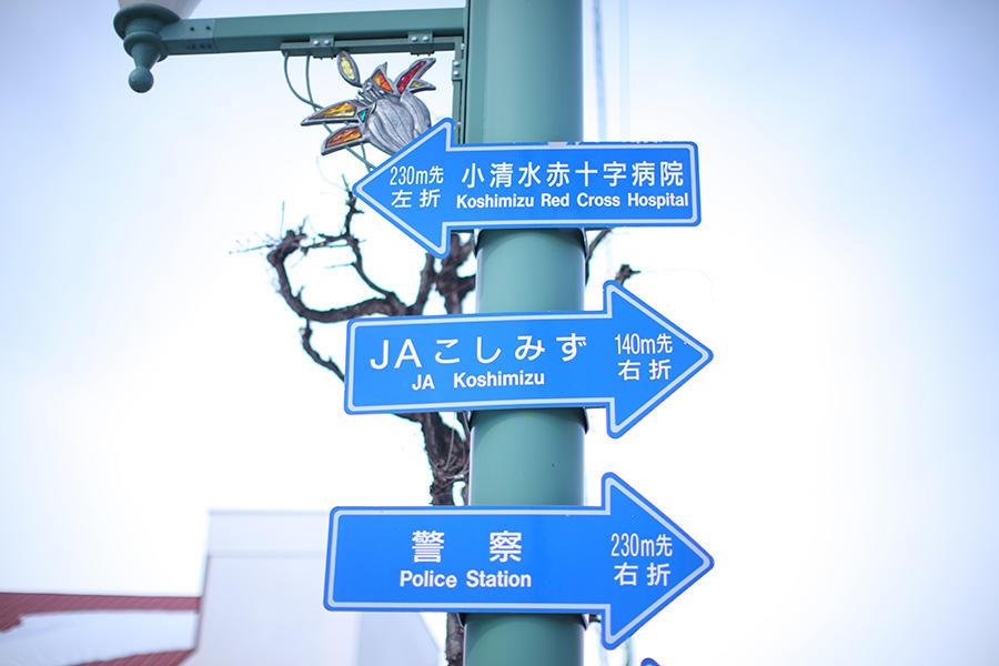 koshimizu-honya_6.jpg
