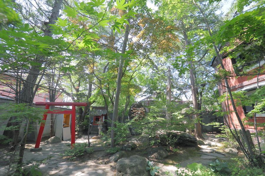 koshimoto17.JPG