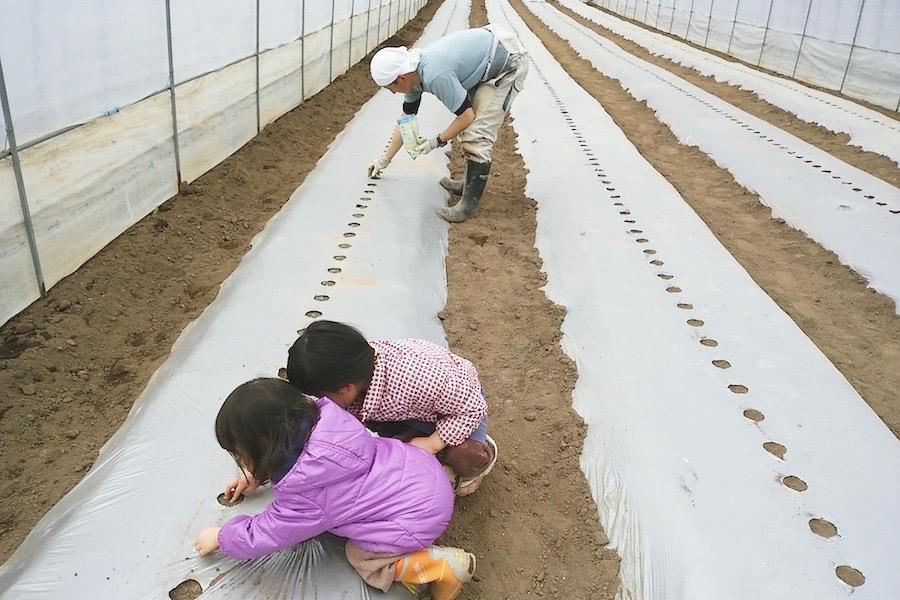 matsutsuru_farm8.jpg