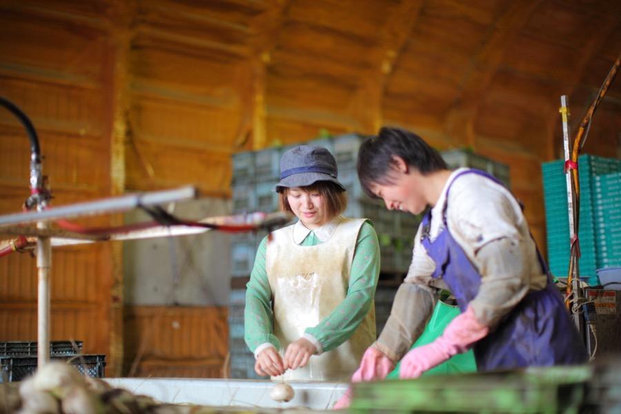 https://kurashigoto.hokkaido.jp/image/musou07.JPG