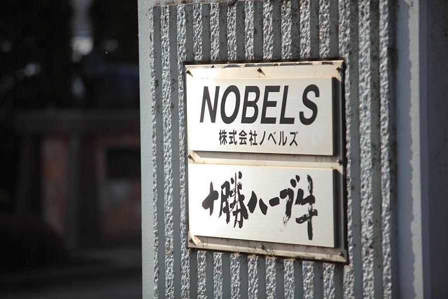 nobels_7.jpg