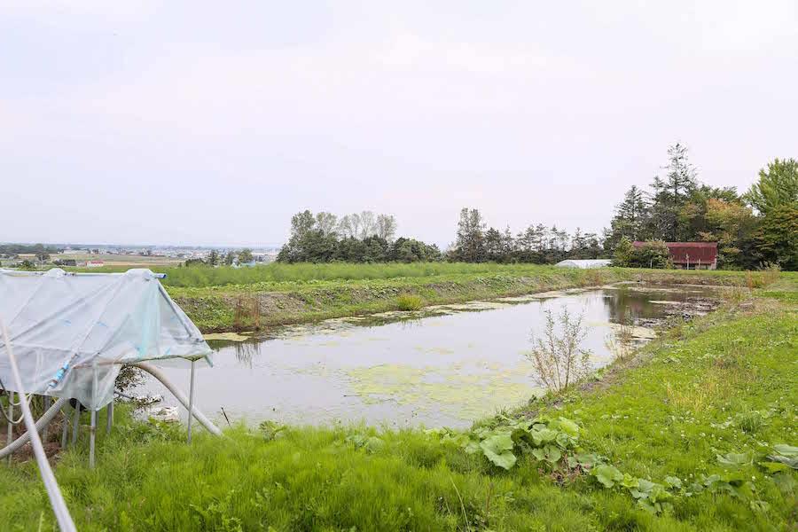 oshitani_farm3.jpg