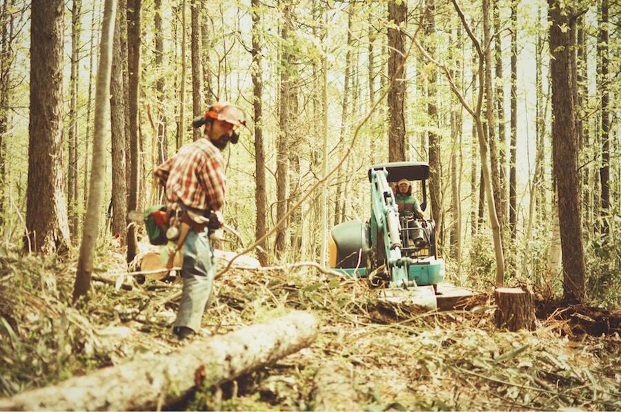 outwoods28.jpeg