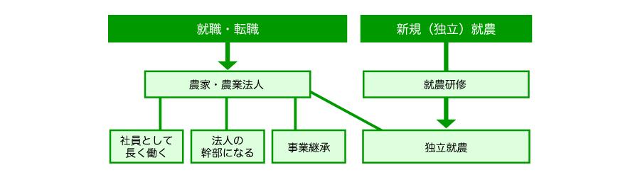sentakushi.png