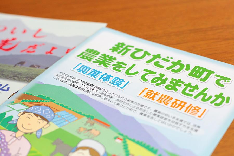 shinhidaka_ninaite_03.jpg