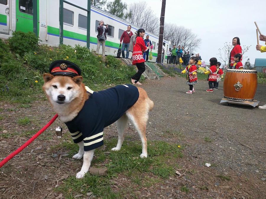 shintotsukawa21.jpg